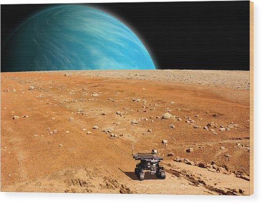 Rover No.2 Wood Print