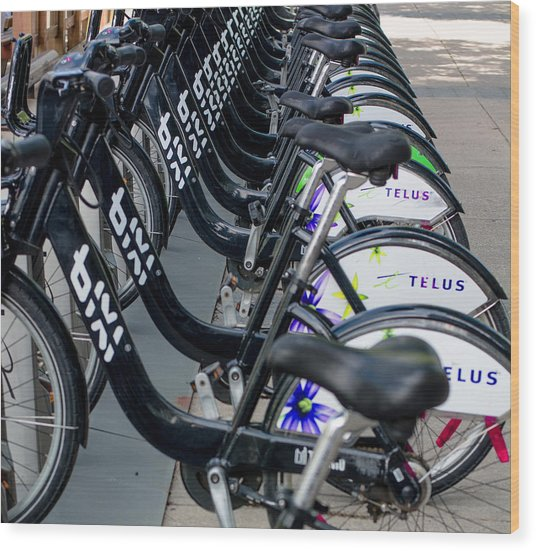 Row Of Bikes Wood Print