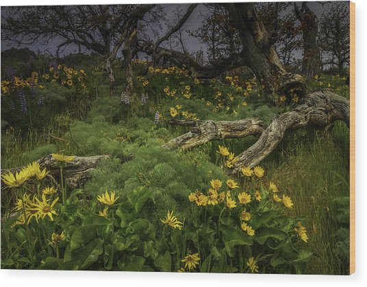 Rowena Preserve Wood Print