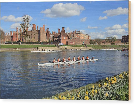 Rowing On The Thames At Hampton Court Wood Print