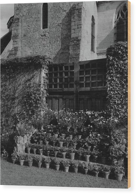 Rows Of Pot Plants Lined On The Steps Of A Garden Wood Print