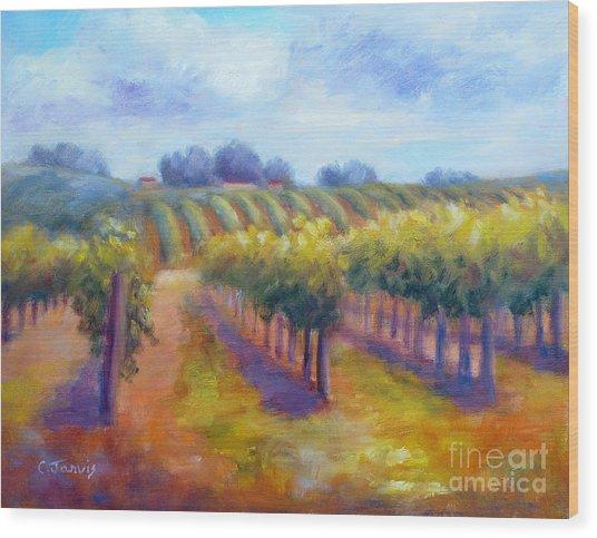 Rows Of Vines Wood Print