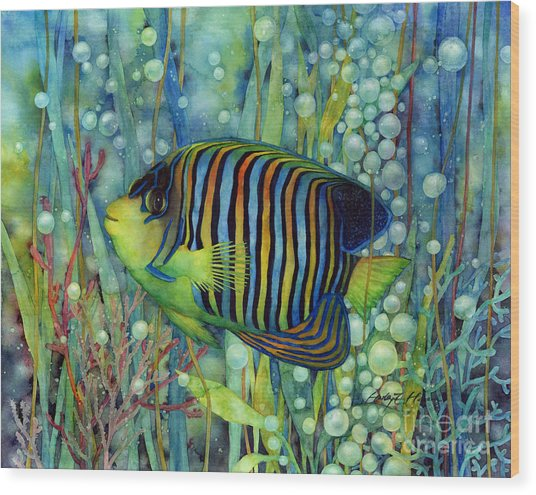 Royal Angelfish Wood Print