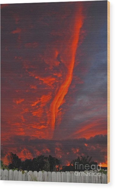 Royal Sunset Wood Print