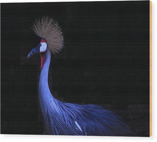 Animal 6 Wood Print