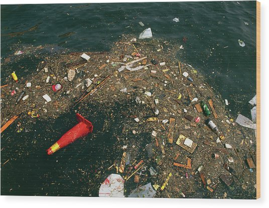 Rubbish Floating On A River Wood Print by Tony Craddock/science Photo Library