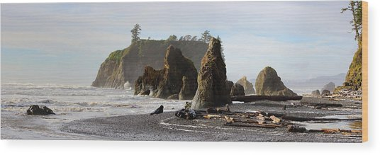 Ruby Beach Wood Print