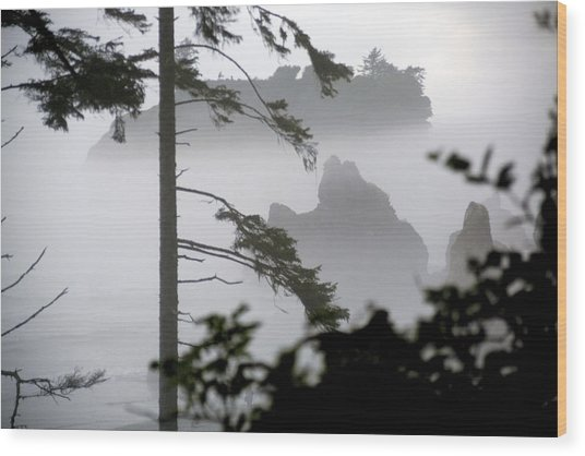 Ruby Beach Washington State Wood Print