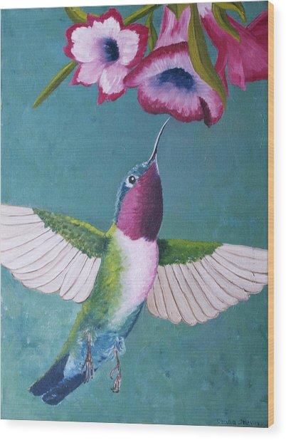 Ruby-throated Hummingbird Wood Print by Cecilia Stevens