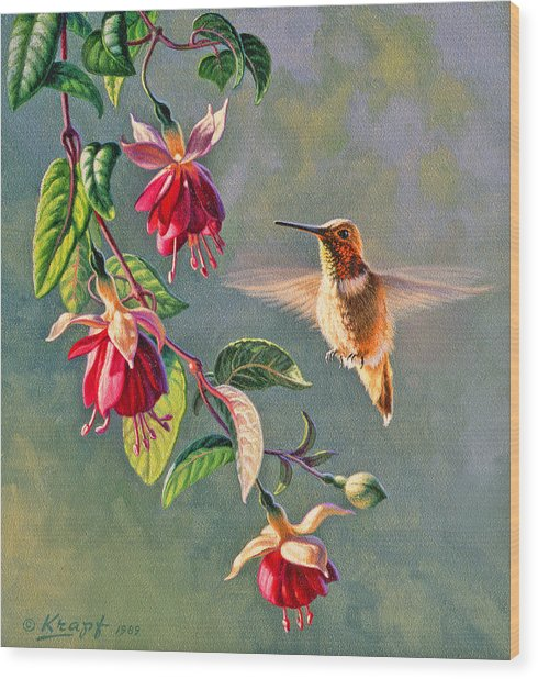 Rufous And Fuschia Wood Print