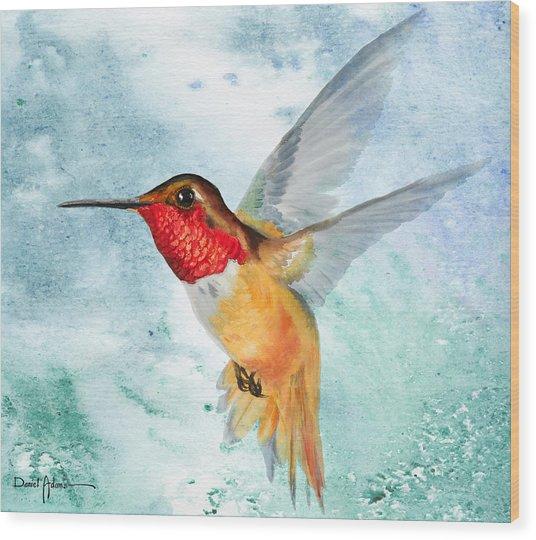 Da199 Rufous Humming Bird By Daniel Adams Wood Print