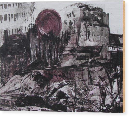 Ruins In Shades Of Gray  Wood Print