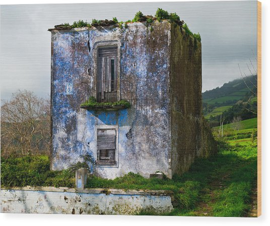 Ruins Of House Painted Blue Wood Print
