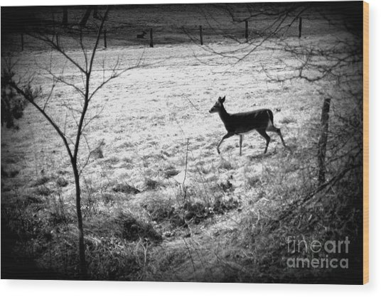 Running Deer Wood Print
