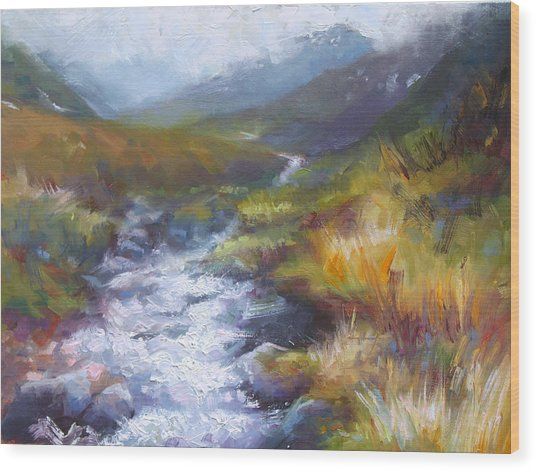 Running Down - Landscape View From Hatcher Pass Wood Print