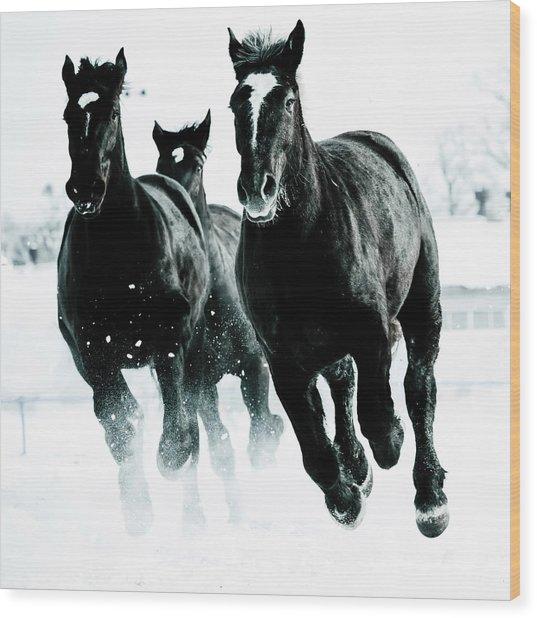 Running Horses Wood Print by Makieni's Photo