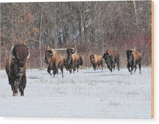 Running Wild Wood Print