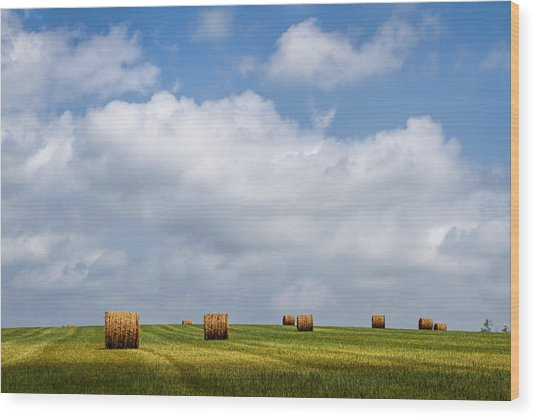 Rural America - A View From Kansas Country Roads Wood Print