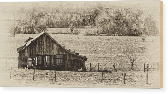 Rural Dreams Wood Print