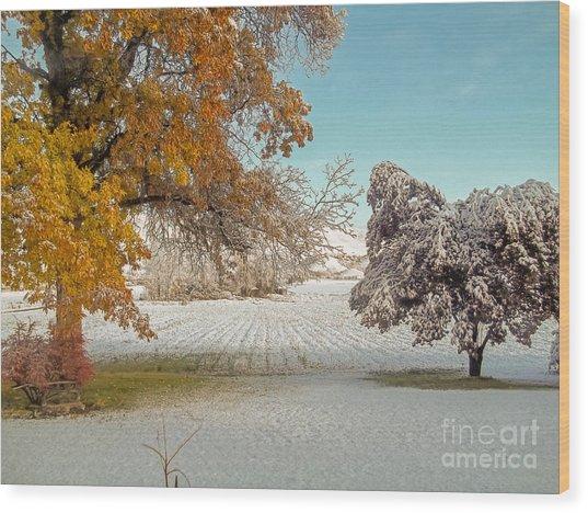 Rural Early Snow In Western Colorado  Wood Print