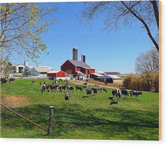Rural Farm Wood Print