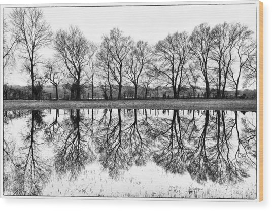 Rural Reflections Wood Print by Ron Plasencia