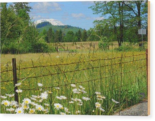 Rural Springtime  Wood Print by Mamie Gunning