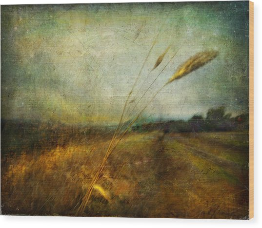 Ruralscape #19. The Victory Of Silence Wood Print