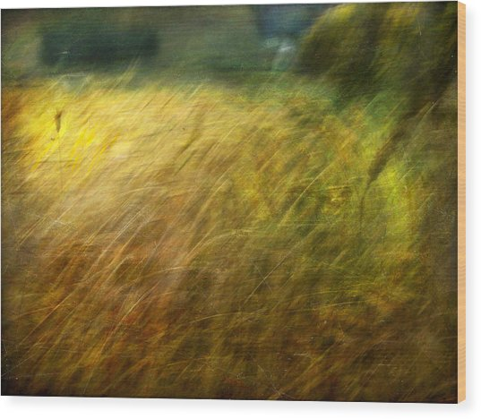 Ruralscape #8. Field And Wind Wood Print by Alfredo Gonzalez