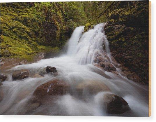 Rushing Cascades Wood Print