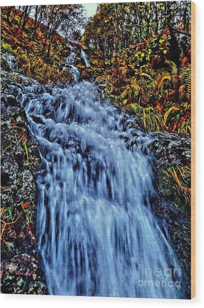 Rushing Falls Wood Print