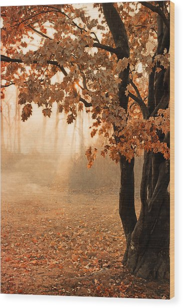 Rust Apricot Orange Maple Autumn Sunrise Wood Print