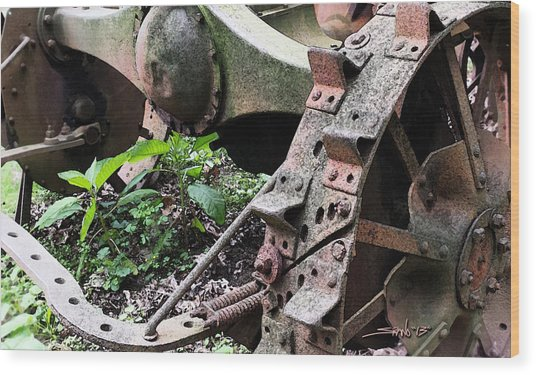 Rusted Axle Planter Wood Print