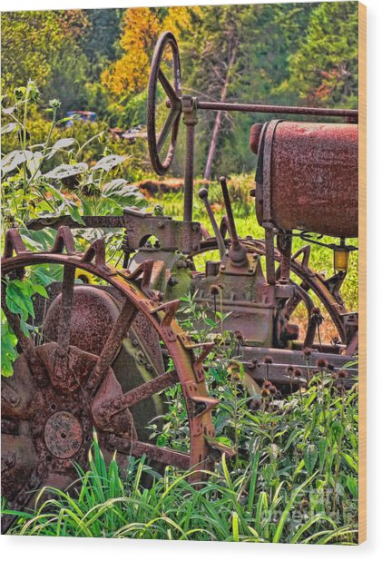 Rusted Wood Print by Colleen Kammerer