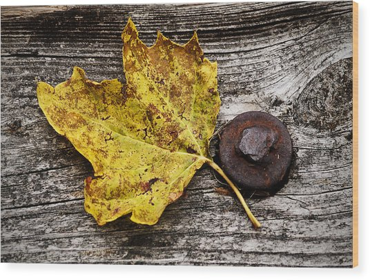 Rustic Leaf Wood Print
