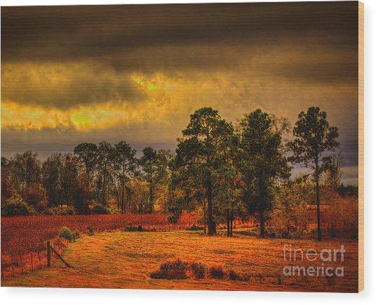 Rustic Pasture Wood Print