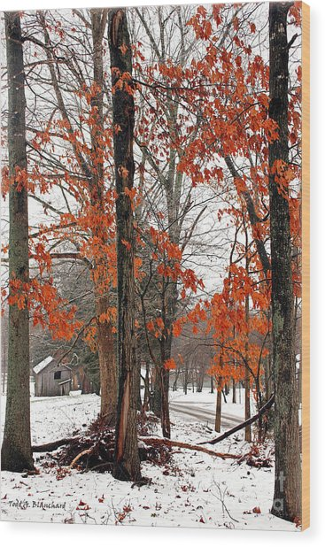 Rustic Winter Wood Print