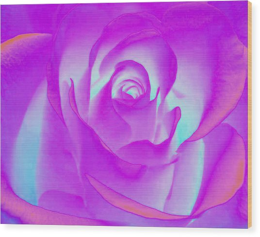 Sabattier Rose Wood Print