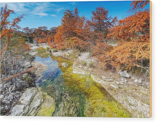 Sabinal River Magic Utopia Texas Hill Country Wood Print