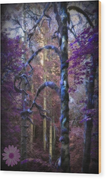 Sacred Forest Wood Print