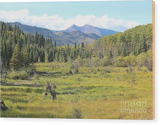 Wood Print featuring the photograph Saddle Mountain by Ann E Robson