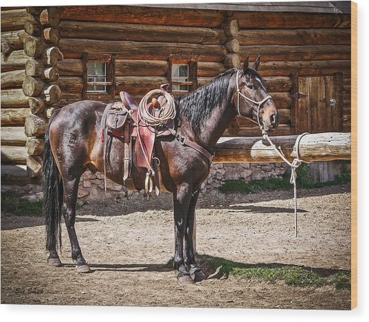 Saddled And Waiting Wood Print