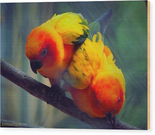 Safari Birds Wood Print by Sarode Nimmanwattana