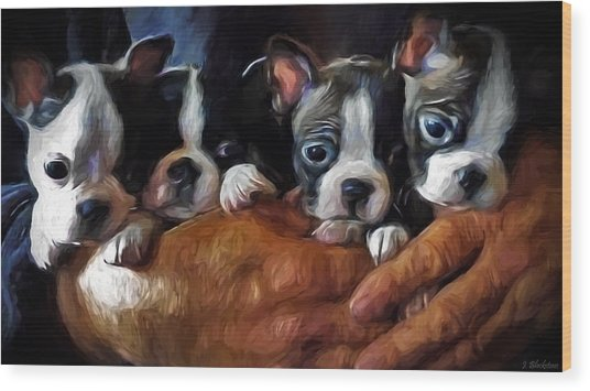Safe In The Arms Of Love - Puppy Art Wood Print