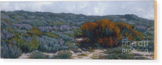Sage On The Dunes Wood Print