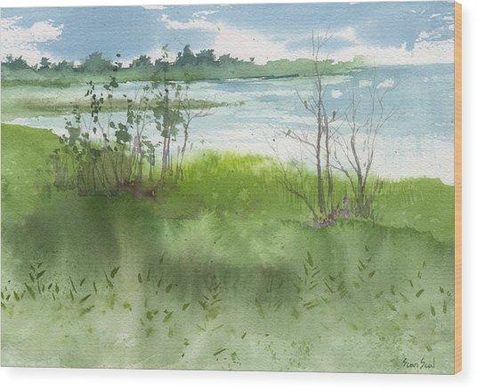 Saginaw Bay 7-26-13 Wood Print