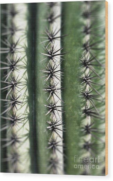 Saguaro Catus Needles Wood Print