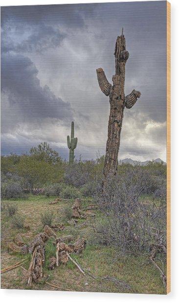 Saguaro Ending Wood Print