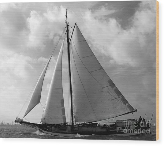 Wood Print featuring the photograph Sail By by Luc Van de Steeg