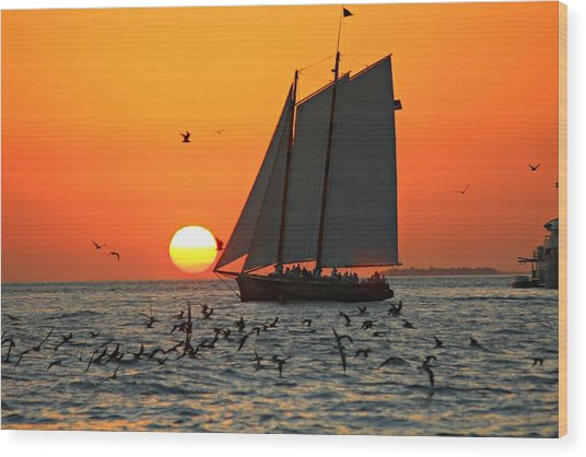 Sail Into The Sunset Wood Print